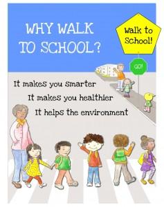 why-walk900